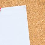 Borse di studio per laureati in medicina veterinaria: scadenza per le domande