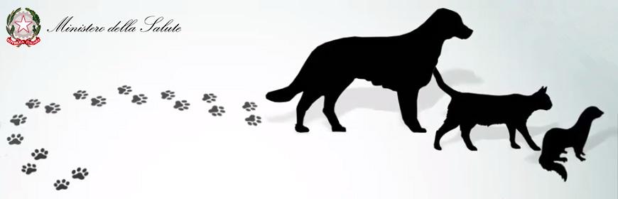 Corso ECM FAD / Movimentazione a fini non commerciali di animali da compagnia