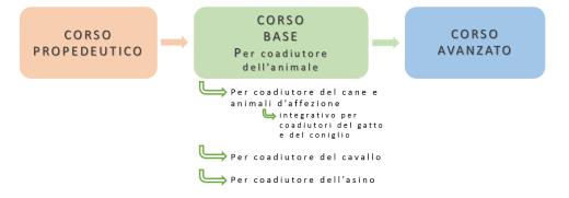 Formazione Coadiutore dell'animale negli IAA