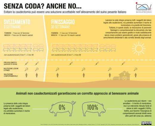 L'impatto del taglio della coda sul benessere del suino italiano