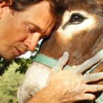 Il CRN per gli interventi assistiti con gli animali al simposio IAHAIO 2015