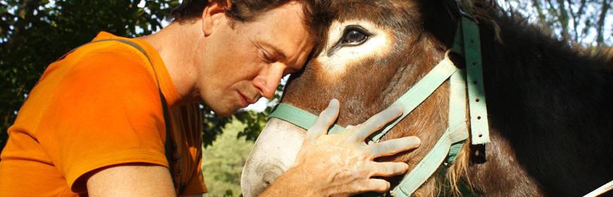 Il CRN per gli interventi assistiti con gli animali al prossimo SIMPOSIO IAHAIO