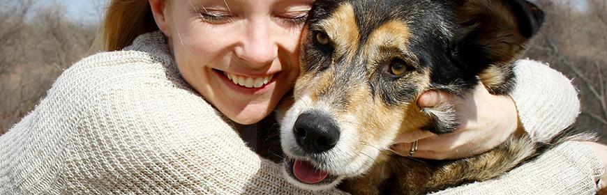 Appunti di scienza: medicina trasfusionale e Banca del sangue canino