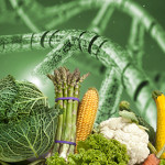 Corso ECM / OGM: problematica, campionamento e risvolti analitici