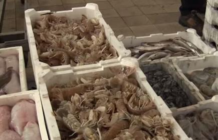 Mercato ittico all'ingrosso di Venezia
