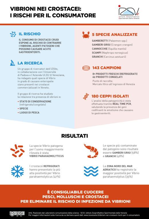 Vibrioni nei crostacei: i rischi per il consumatore [Infografica]