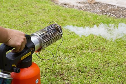Affumicatore zanzare