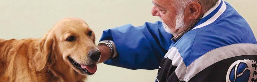 Appunti di scienza: Interventi assistiti con gli animali
