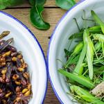 Insetti, il cibo del futuro tra rischi alimentari e aspetti nutrizionali