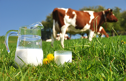 Raw milk is percieved as natural
