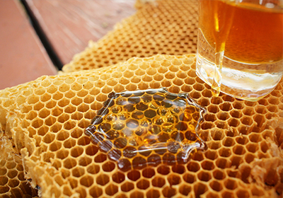 Analisi patogeni e residui in api e miele