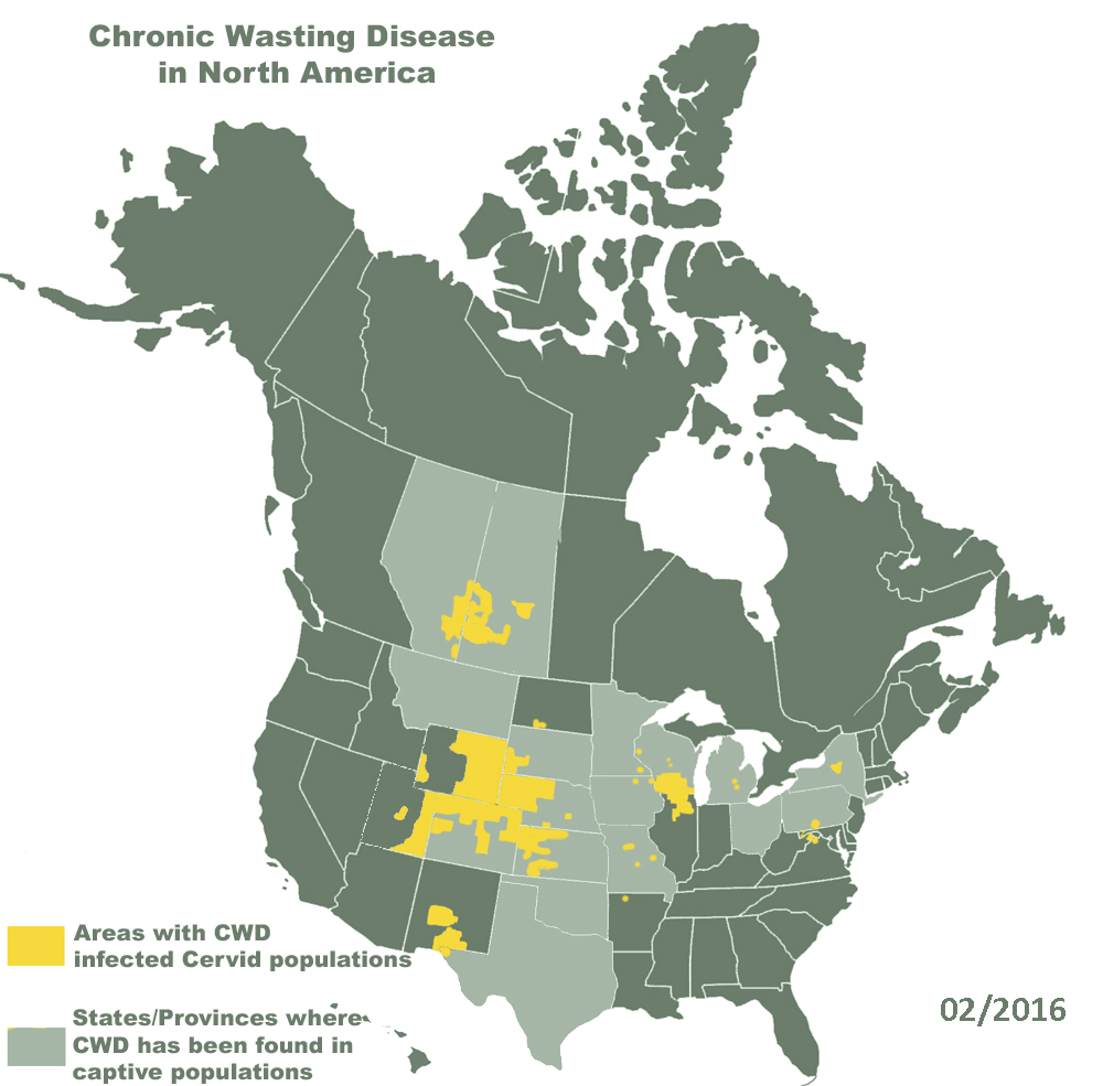 Diffusione della Chronic Wasting Disease in Nord America