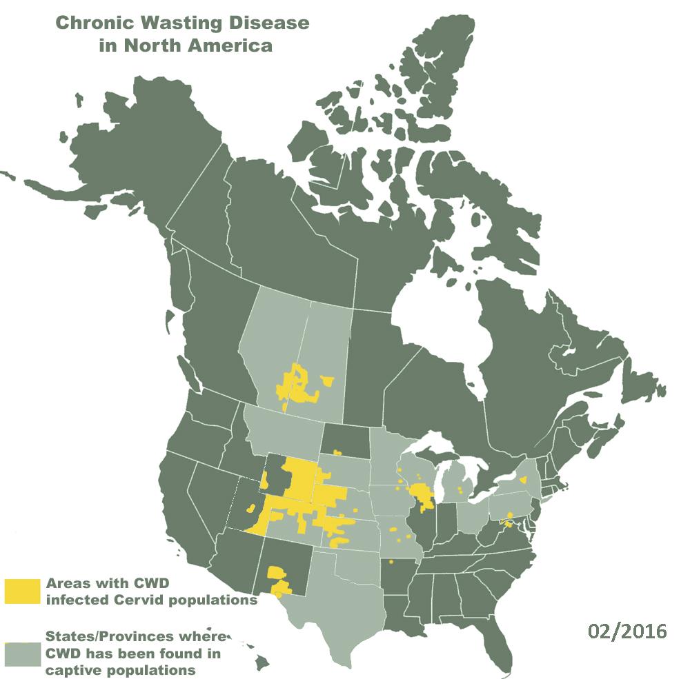 Diffusione della Chronic Wasting Disease in Nord America