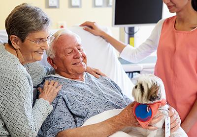 Intervento assistito con cane in ospedale