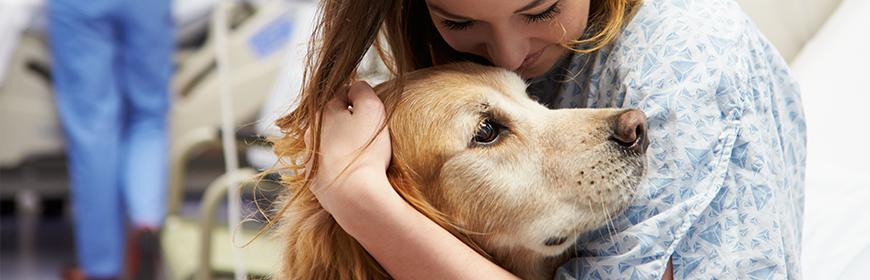 Interventi assistiti con gli animali e medici: primi risultati della survey nazionale