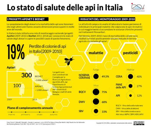 Lo stato di salute delle api in Italia [Infografica]