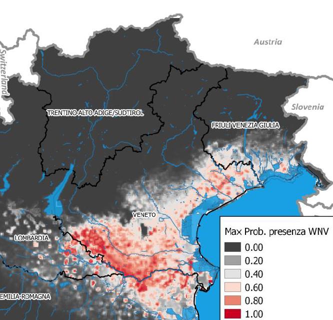 Mappa probabilità presenza West Nile Disease Veneto