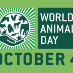 World Animal Day: l'IZSVe supporta la Giornata mondiale degli animali