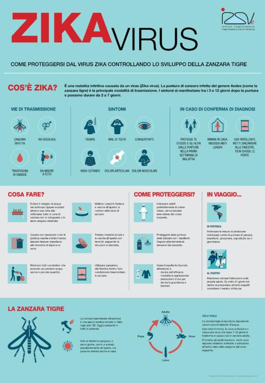 Zika Virus Infografica