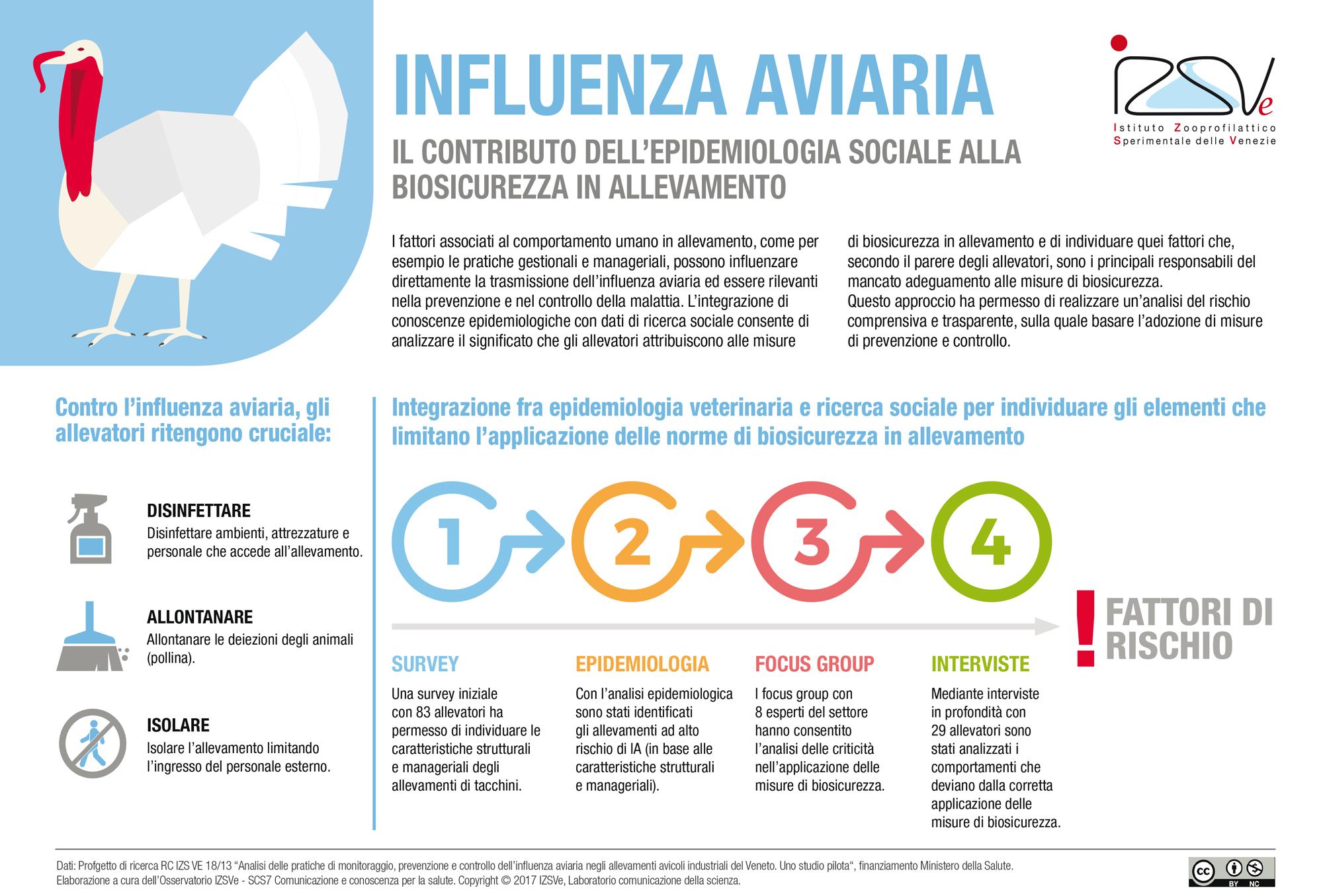 Influenza aviaria: il contributo dell'epidemiologia sociale alla biosicurezza negli allevamenti di tacchini