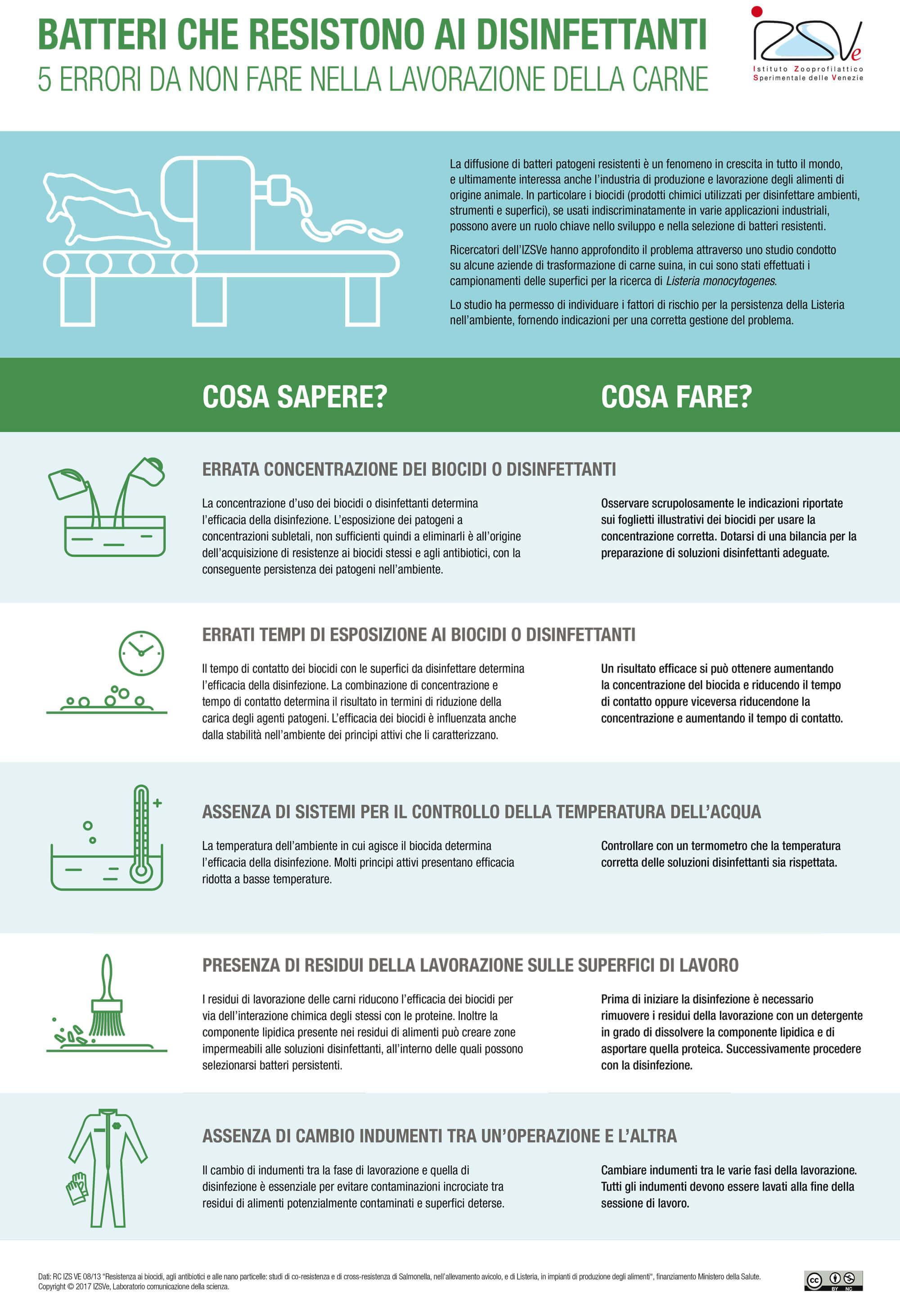 Batteri che resistono ai disinfettanti: comprendere e affrontare il fenomeno [infografica]