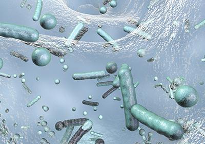 Batteri resistenti ai biocidi