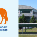 Il Centro di referenza nazionale per gli Interventi assistiti con gli animali trasferito presso la sede centrale dell'IZSVe