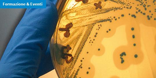 Corso ECM / Il challenge test: strumento operativo per valutare Listeria monocytogenes