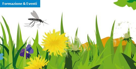 Corso ECM online / Artropodi vettori di patogeni per l'uomo e gli animali: zanzare