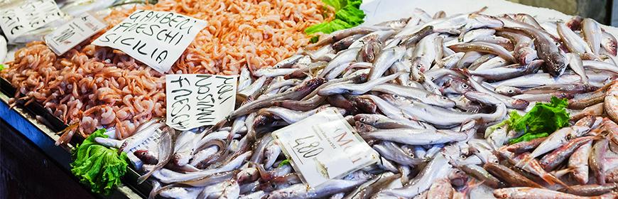 Identificazione di specie ittiche