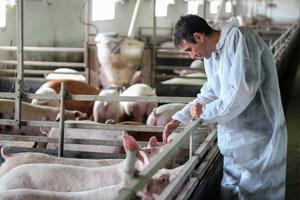 percezione del benessere animale