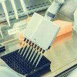 VetBioNet, come accedere ai laboratori e ai campioni del network