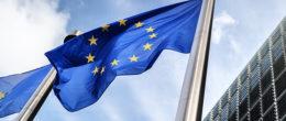 L'IZSVe selezionato come nuovo Laboratorio europeo di riferimento per l'influenza aviaria e la malattia di Newcastle