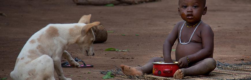 Rabbia, il sostegno dell'IZSVe ai servizi veterinari di Liberia e Burkina Faso