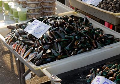 Frode alimentare settore itticio