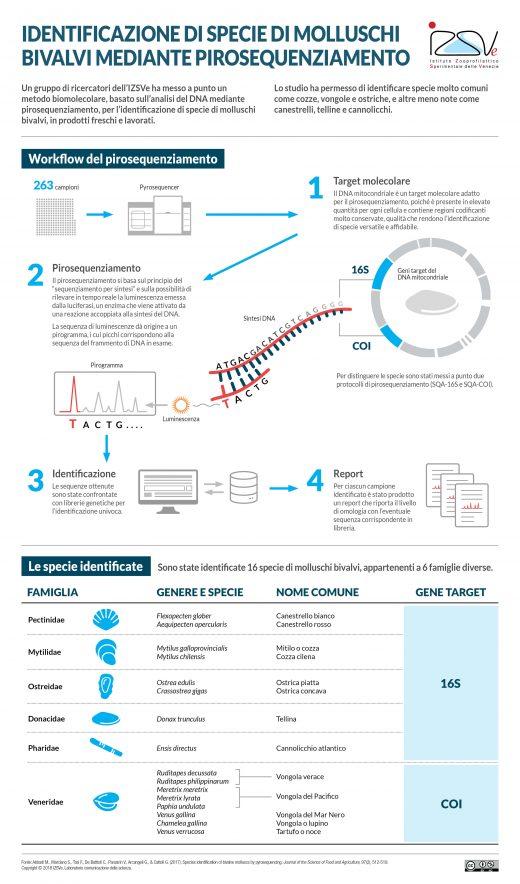 Identificazione bivalvi pirosequenziamento infografica