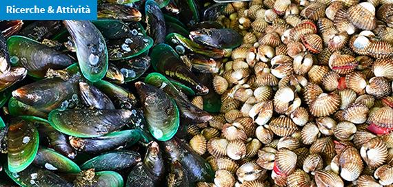 Identificazione di specie di molluschi bivalvi mediante pirosequenziamento