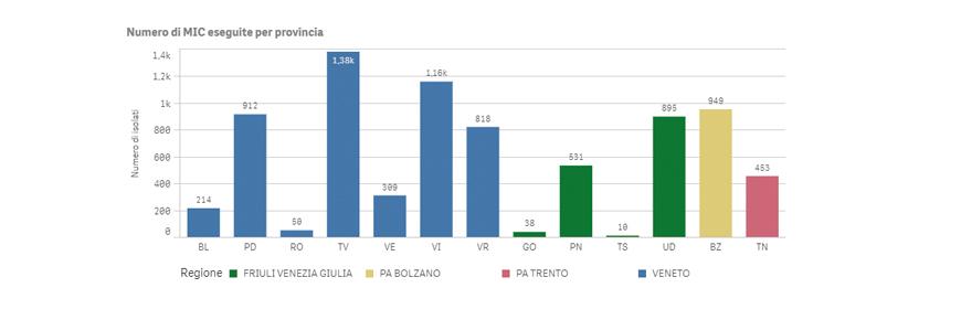 Report Pubblico Mic Izsve Aggiornato