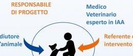 Interventi Assistiti con gli Animali, due infografiche su équipe e requisiti formativi degli operatori