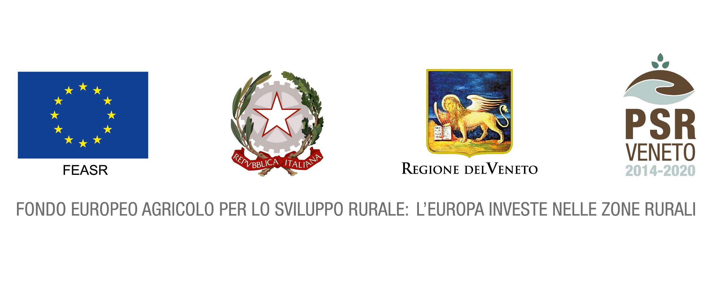 Istituzioni PSR Veneto