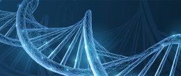 Corso ECM / Scambio di risorse genetiche. Protocollo di Nagoya e la normativa europea