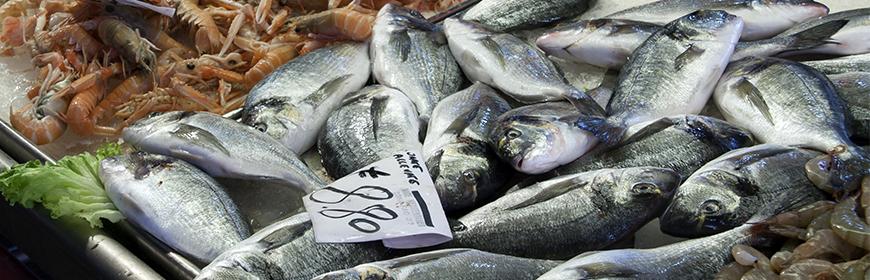 Come riconoscere se il pesce è fresco? [Video]
