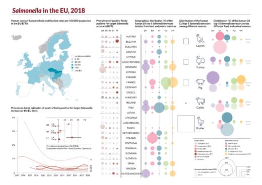 Salmonella nella UE Report EFSA zoonosi 2018 [Infografica