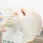 I laboratori dell'IZSVe già operativi per le analisi Covid-19 sui tamponi
