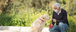 Interventi Assistiti con gli Animali (IAA) e COVID-19. Indicazioni operative