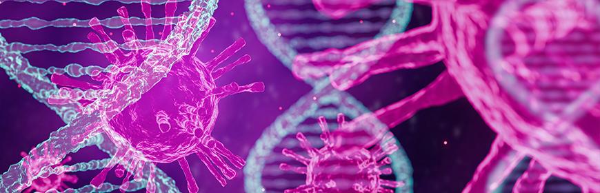 Sequenziato il genoma del virus SARS-CoV-2 circolante in Veneto