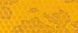 Api e apicoltura. Preziosa risorsa per ambiente e agricoltura [Pubblicazione]