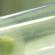 zanzara-covid-immagine-evidenza