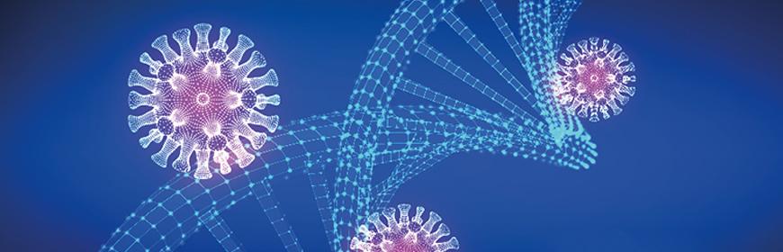 Sequenziamento del genoma di SARS-CoV-2 appartenenti al cluster dei virus identificati in Serbia