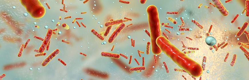 Antibiotico-resistenza e antibiotico-sensibilità